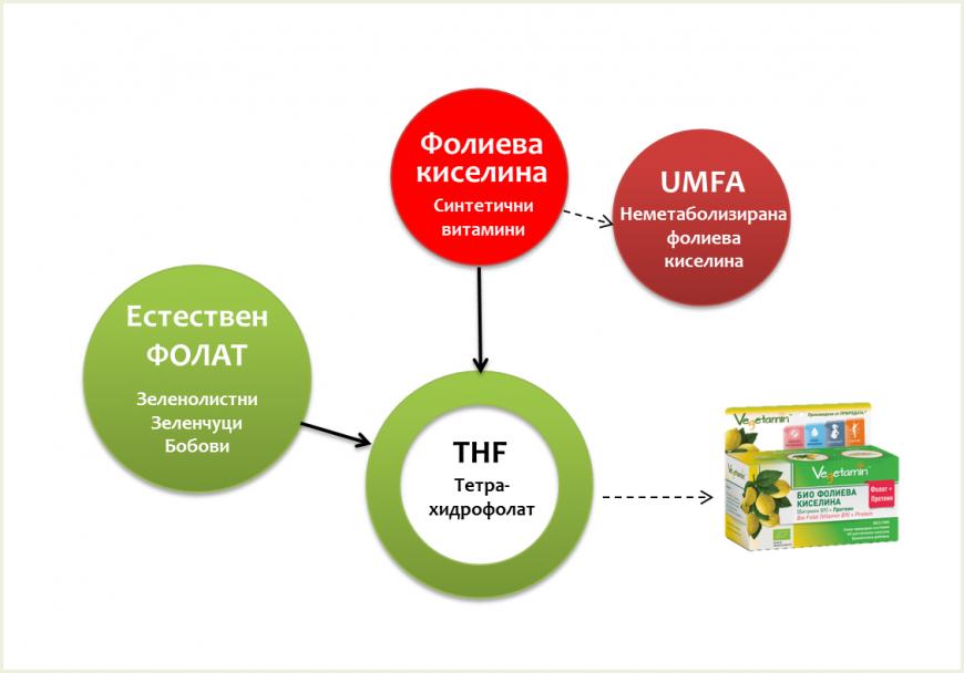 Folat, folic acid, vitamin B9, 5-MTHF