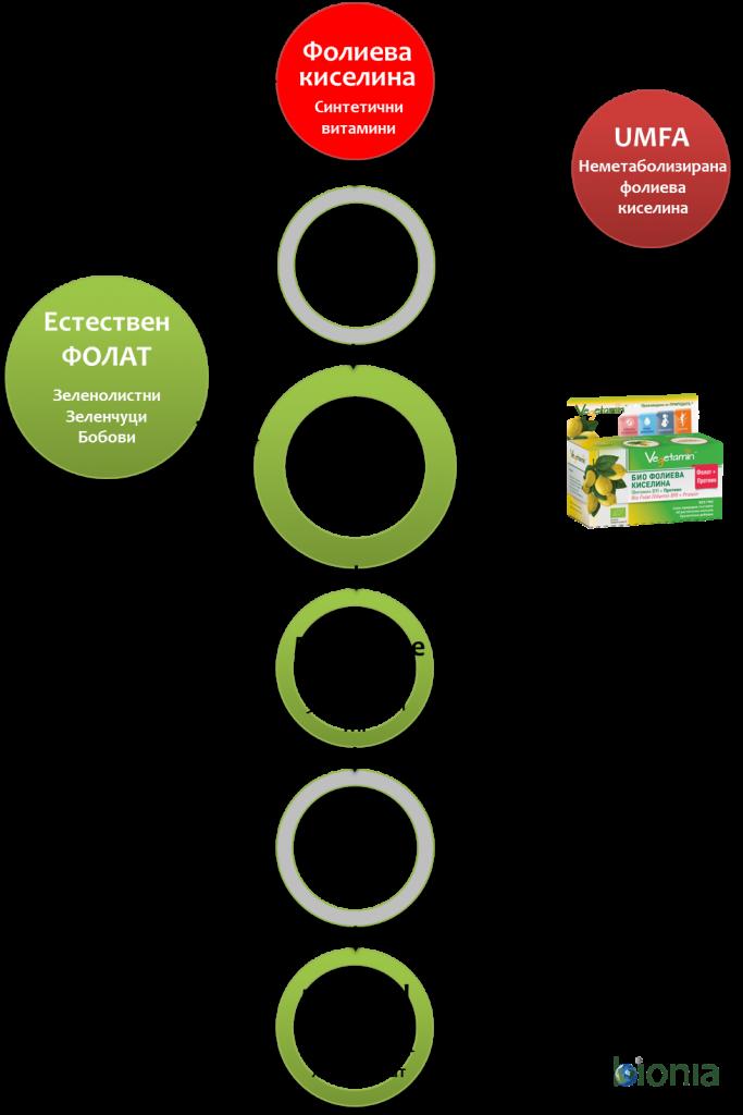 Folat, folic acid, vitamin B9 razlika