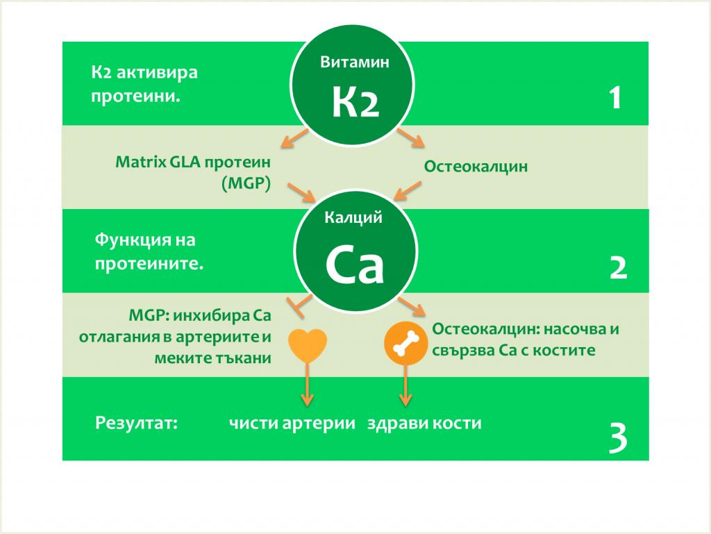 Ca+K2